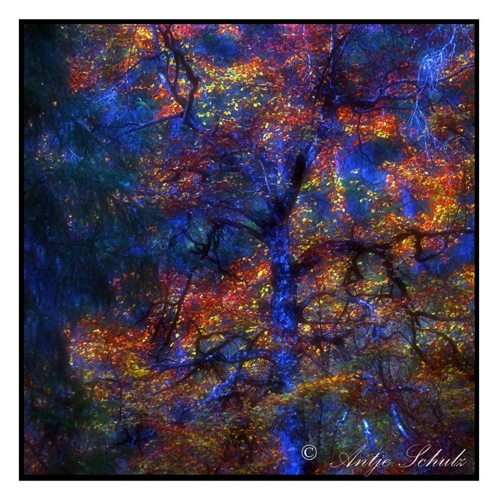 Studie Blau - Impressionistische Fotografie